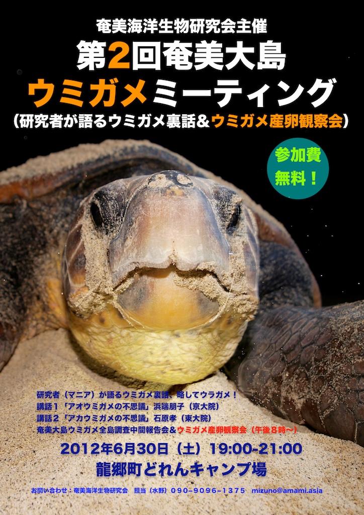 第2回奄美大島ウミガメミーティング開催のお知らせ_a0010095_23414090.jpg