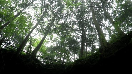 トレーニング・富士山 !_e0111396_18411128.jpg