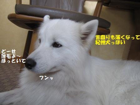 f0212597_1929674.jpg
