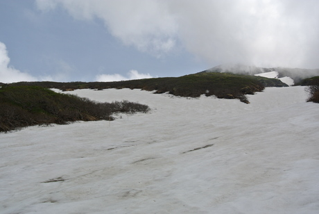 2012年6月15日 新緑と残雪と山菜と酒の鳥海山へ_c0242406_16304930.jpg