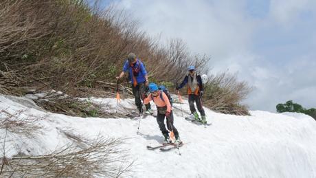 2012年6月15日 新緑と残雪と山菜と酒の鳥海山へ_c0242406_802191.jpg