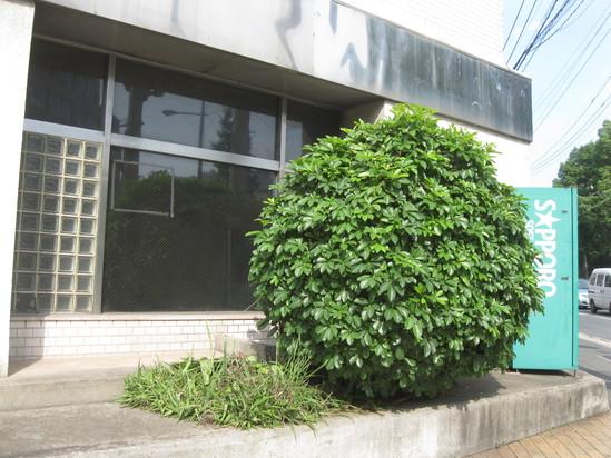 「ゴミ捨て」に~☆_a0125419_1932728.jpg