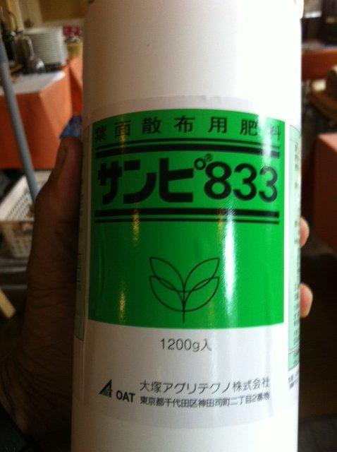 けがをした野菜達・・待ってろよ・・・栄養剤をあげるから 葉面散布肥料です_c0222448_14221332.jpg