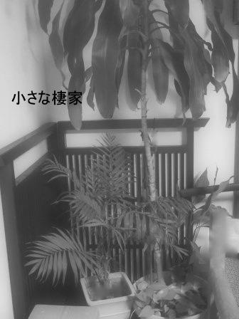 DIYで作ったテーブルの脚♪_a0243064_10234766.jpg