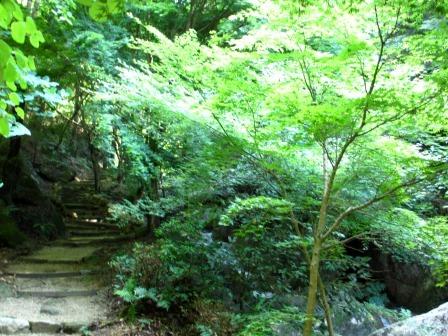 森と水のリゾート~呂久沢の森②_a0243064_2333897.jpg