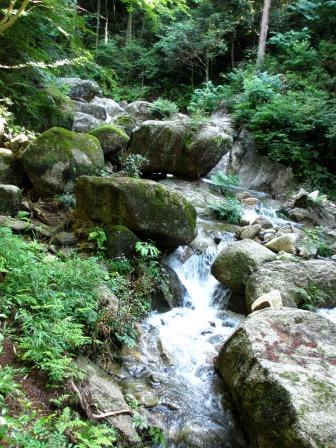 森と水のリゾート~呂久沢の森②_a0243064_23372667.jpg
