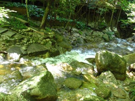 森と水のリゾート~呂久沢の森②_a0243064_23374335.jpg