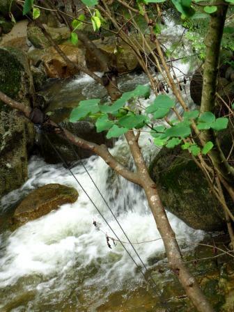 森と水のリゾート~呂久沢の森②_a0243064_23381633.jpg
