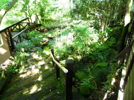 森と水のリゾート~呂久沢の森②_a0243064_23434774.jpg