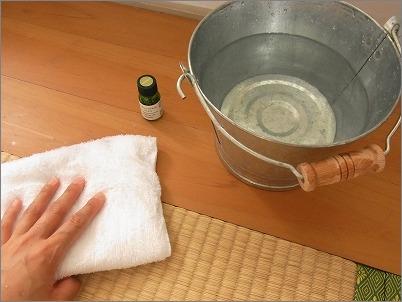 【 畳の拭き掃除×ミント 】_c0199166_23433822.jpg