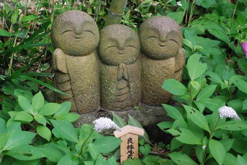 鎌倉のあじさい_d0091671_1330583.jpg