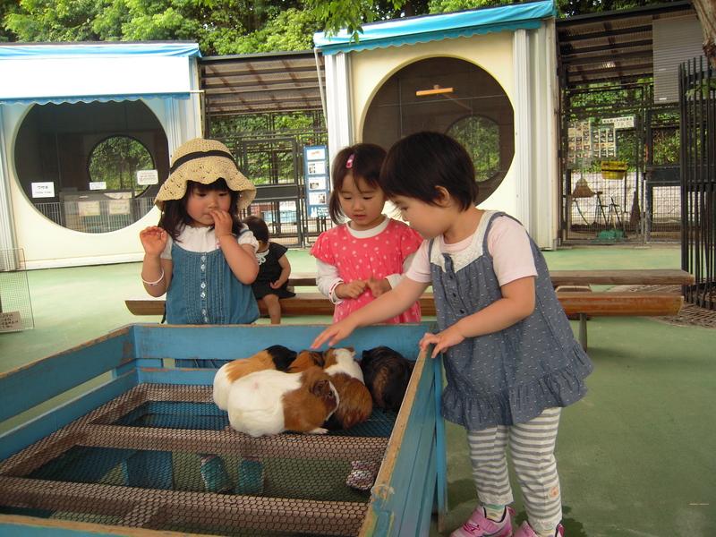 市川動植物園  2012.6.5_e0223771_118362.jpg