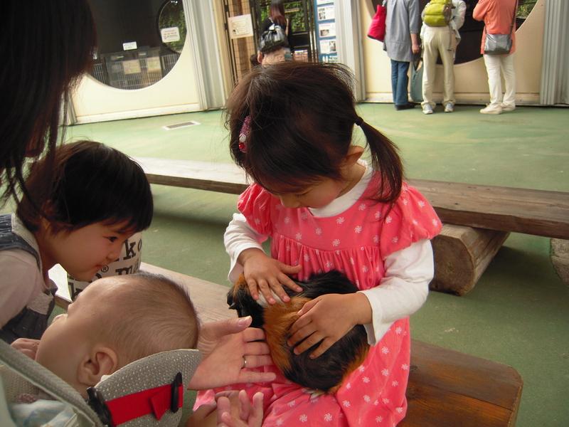 市川動植物園  2012.6.5_e0223771_11966.jpg