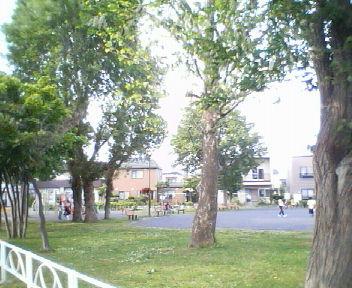 太平・ポプラ公園_f0078286_8415152.jpg