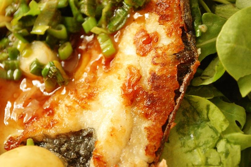 魚のソテー特製マヨ醤油ソースたっぷりネギ添え_d0104926_1504680.jpg