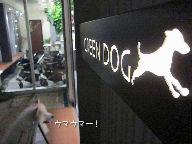 金曜おば散歩_c0062832_716099.jpg