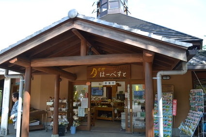 道の駅月夜野矢瀬親水公園 2012_e0228938_2041778.jpg