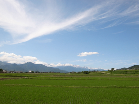 空と緑と池田町_a0014840_22593078.jpg