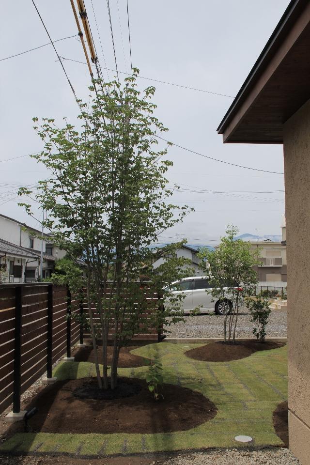 南原の家 1期工事完了_c0112447_2293638.jpg