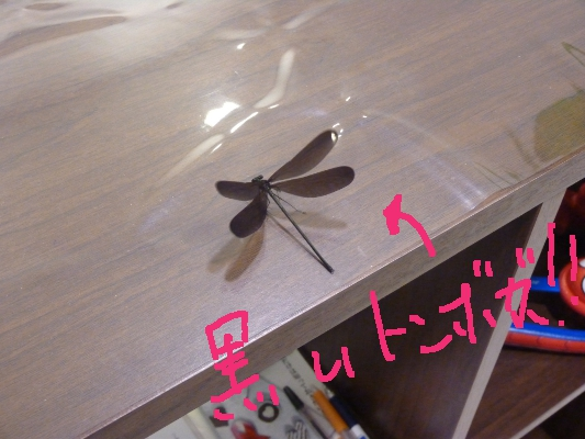 兵庫県 姫路 TATTOO タトゥー 刺青_a0148054_22141685.jpg