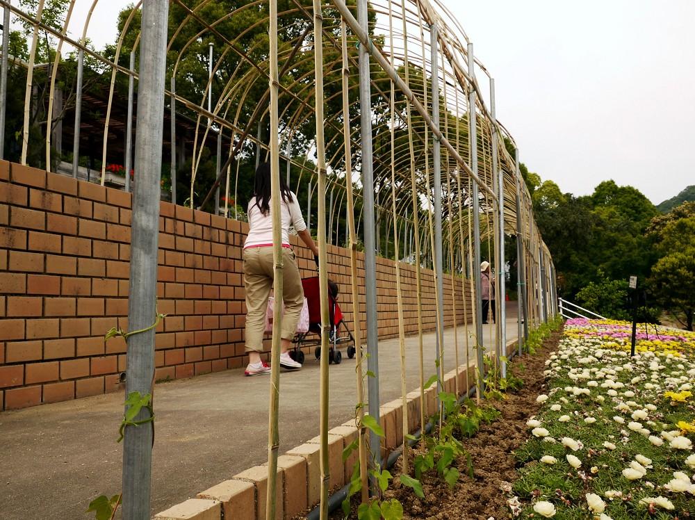 和歌山県植物公園緑花センター _b0093754_2247307.jpg