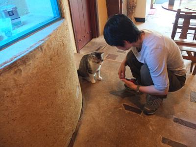 受付猫@花一看_a0180681_2258215.jpg