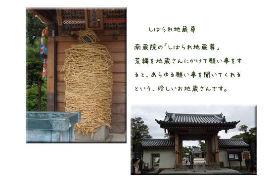 水元公園と本土寺をウォーキング_c0051105_138107.jpg