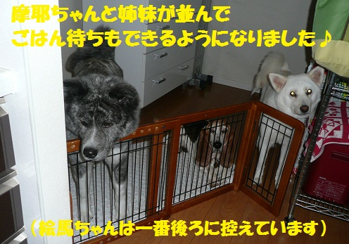 f0121712_232134100.jpg