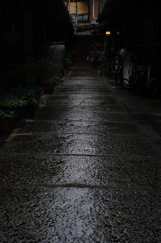 雨のご近所スナップ..._f0152550_12563716.jpg