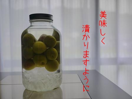 c0210160_19315661.jpg