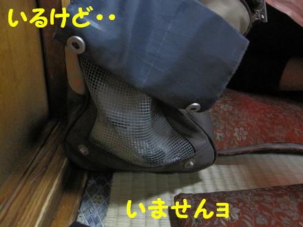 b0193480_1613484.jpg