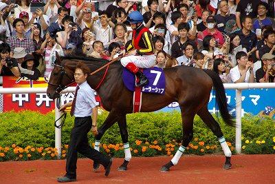 最強馬堂々の復活、宝塚記念はオルフェーヴルがGI5勝目を飾る_b0015386_23543617.jpg