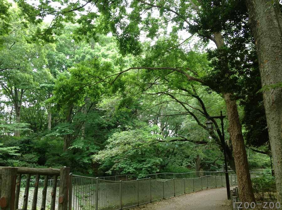 川っぷちを歩く歩く_c0223095_22264445.jpg