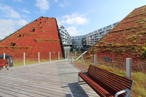 12北欧研修:コペンの再開発オレスタッド・シティー2:8ハウス集合住宅_e0054299_2161977.jpg