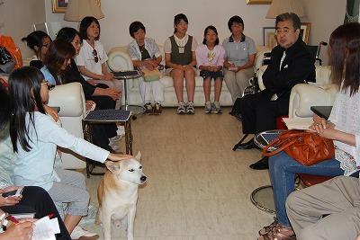 東北の被災地の犬の命を救う!_d0050503_9304189.jpg