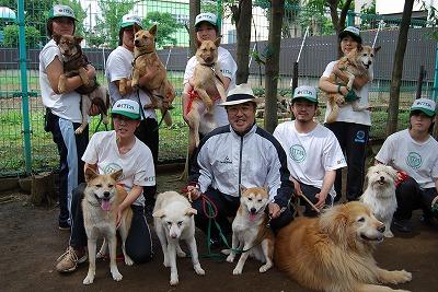 東北の被災地の犬の命を救う!_d0050503_9312863.jpg