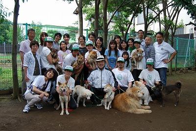 東北の被災地の犬の命を救う!_d0050503_931373.jpg