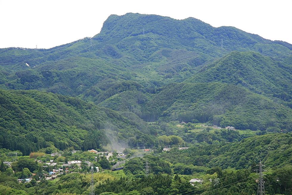 緑の山&C61の煙 - 2012年・上越線 -_b0190710_22422381.jpg