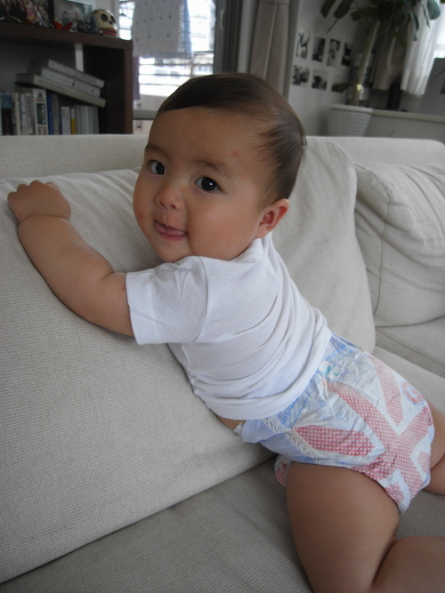 nappies :)_c0060412_10164073.jpg