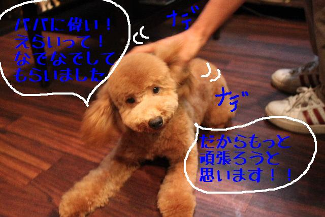 b0130018_22161583.jpg