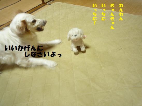 b0113725_1529057.jpg