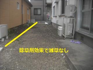 f0031037_22203065.jpg