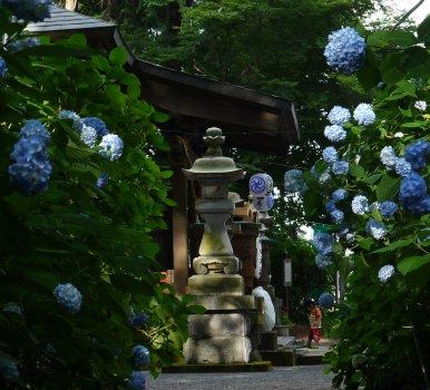 磯山神社 鹿沼市_e0227942_21455595.jpg