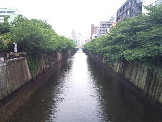 No★Mad in Meguro_e0213248_2151419.jpg