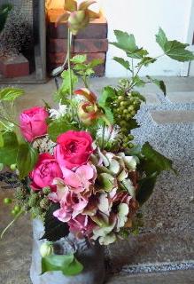 サラセニアの花。。。_a0229658_16475055.jpg