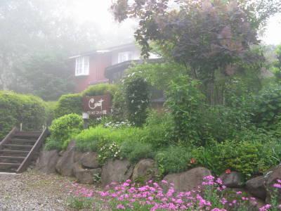 霧の中_a0129867_1083630.jpg