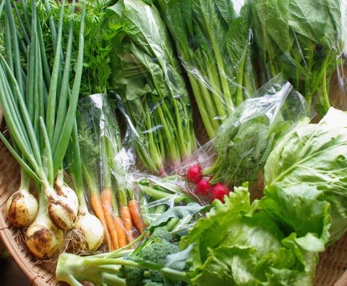 今週の野菜セット(6/25~6/30着)_c0110869_1450557.jpg