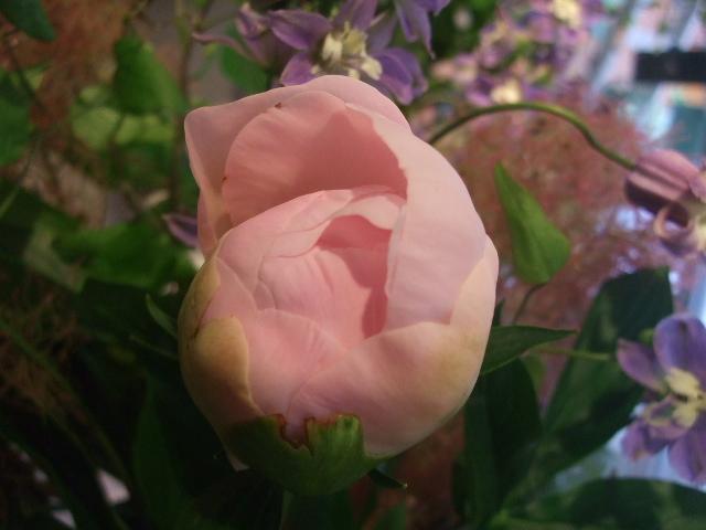 オークリーフ花の教室(加田さんの作品)_f0049672_1623558.jpg