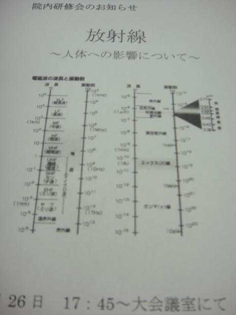 a0239418_192119.jpg