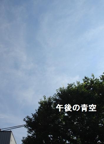 b0226221_1551840.jpg